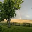 Regenbogen im Juni